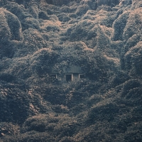 Pelahatchie. Image of house surrounded by foliage.