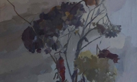 Rose and Hydrangea